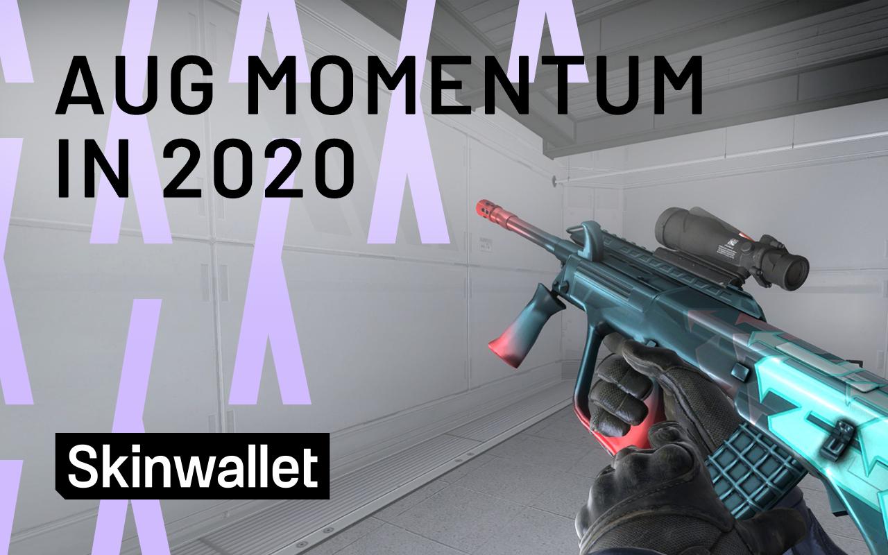 aug momentum csgo skins