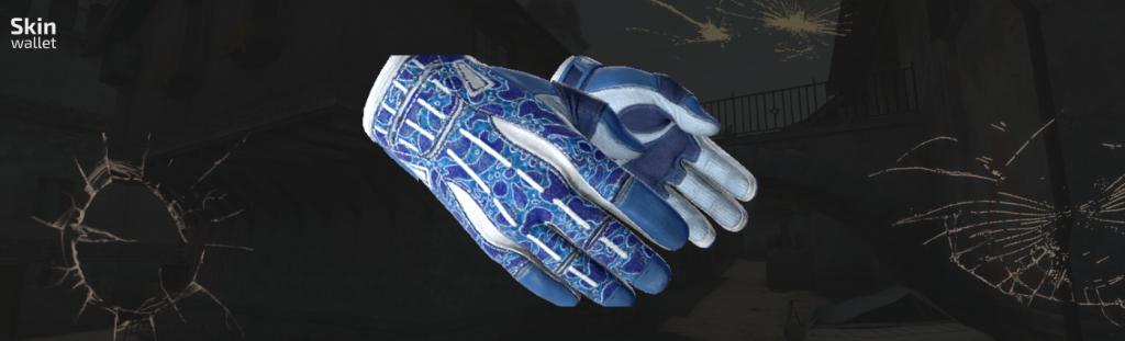 csgo sport gloves amphibious