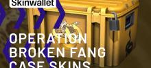 CS:GO скины из оружейного кейса Operation Broken Fang